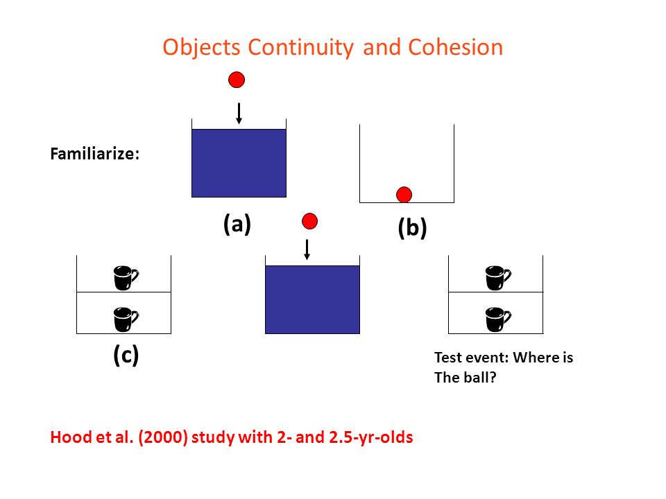 Objects Continuity and Cohesion