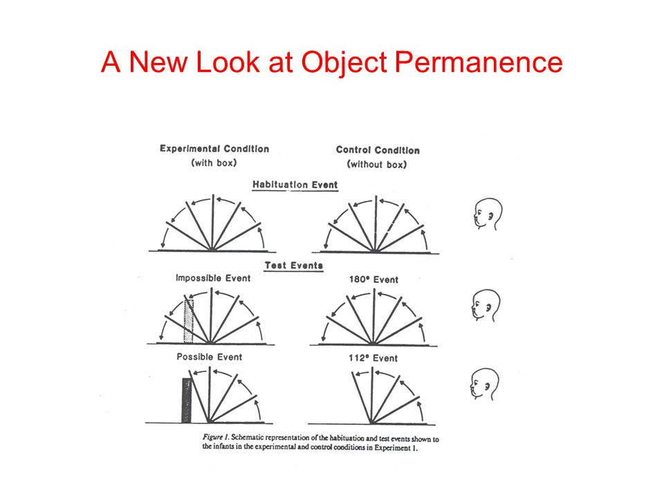 A New Look at Object Permanence