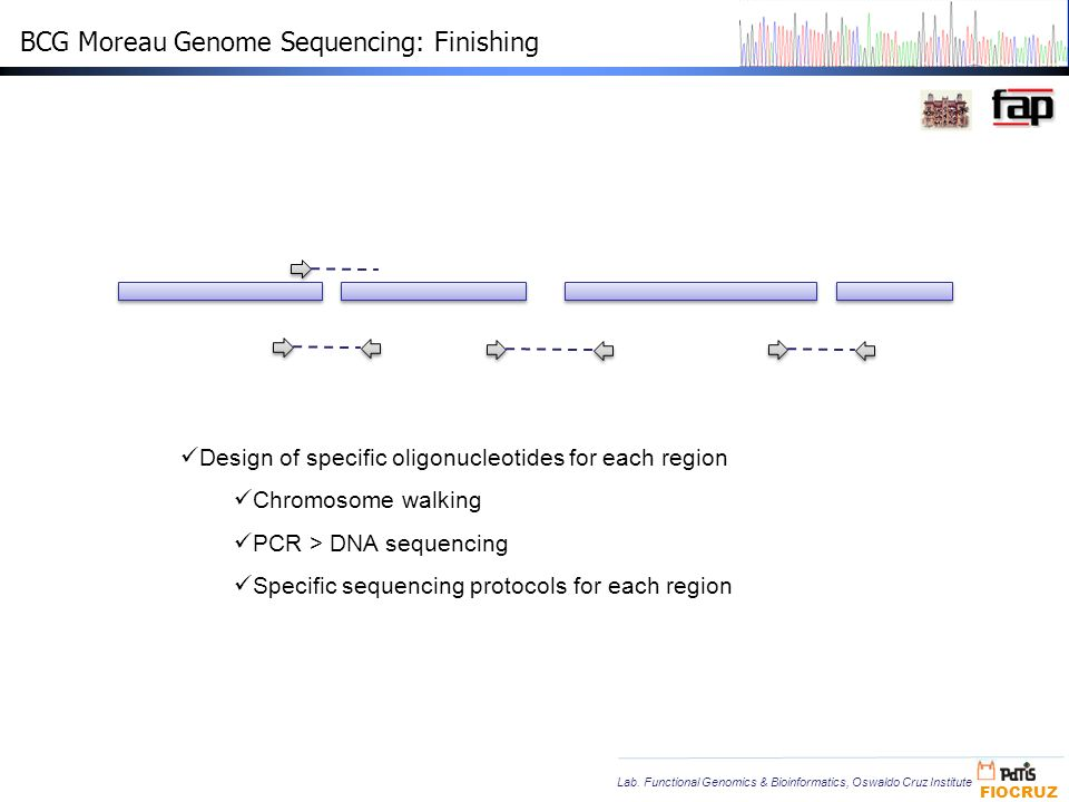 BCG Moreau Genome Sequencing: Finishing
