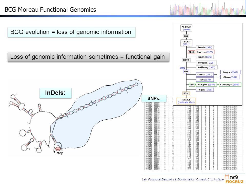 BCG Moreau Functional Genomics