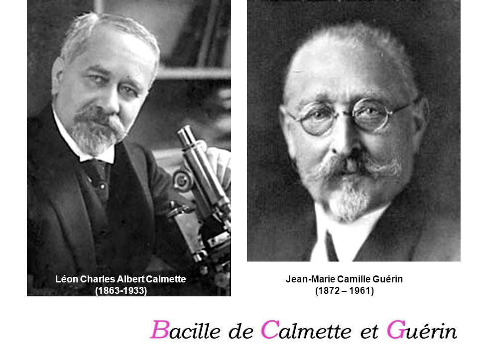 Léon Charles Albert Calmette Jean-Marie Camille Guérin