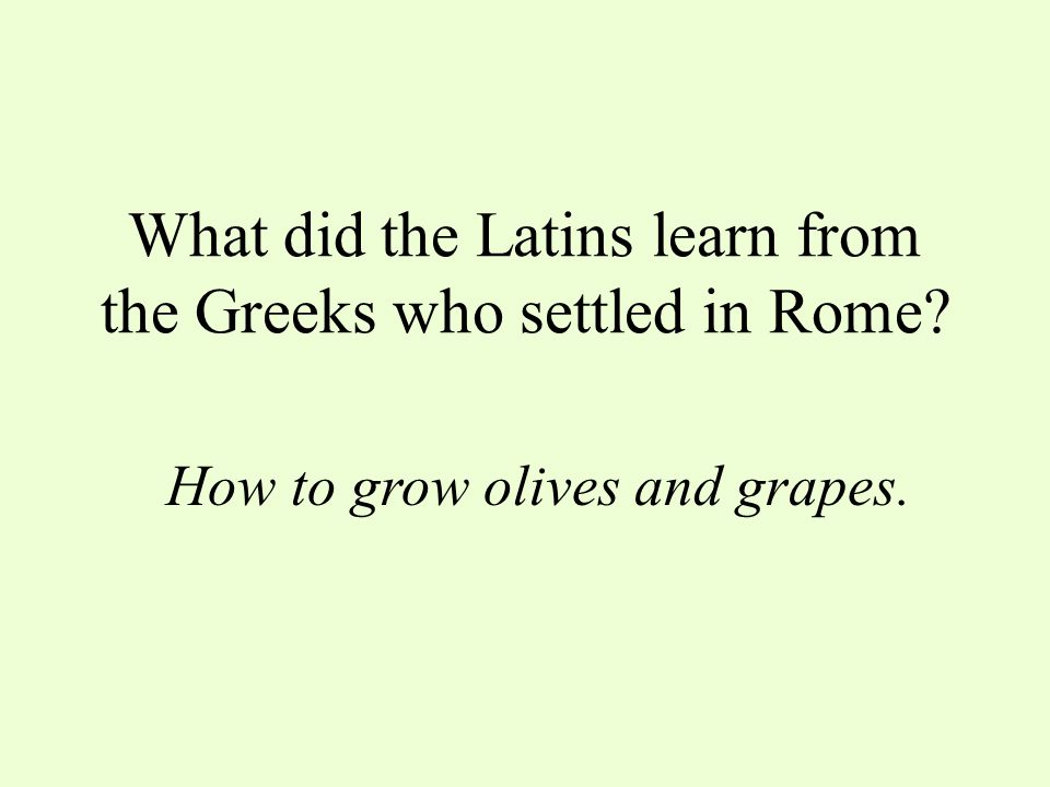 What did the Latins learn from the Greeks who settled in Rome