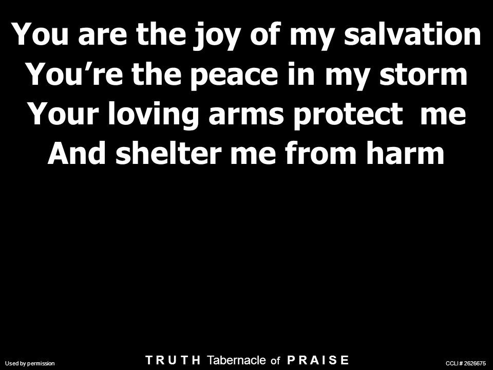 You are the joy of my salvation You're the peace in my storm