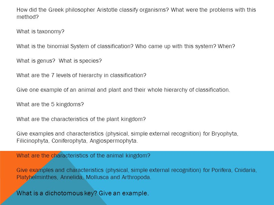 What is a dichotomous key Give an example.