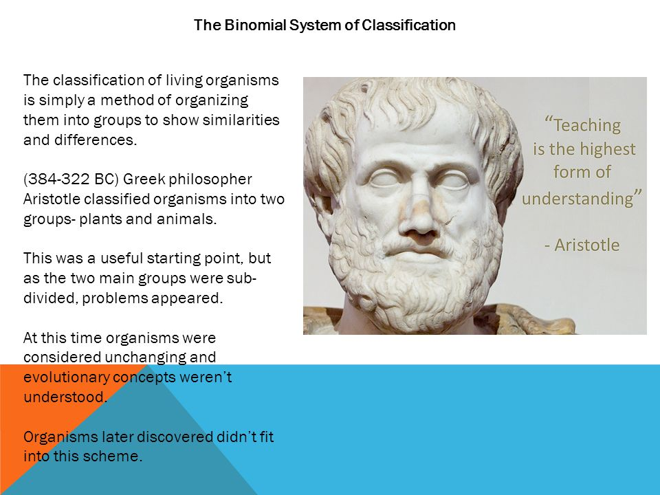 The Binomial System of Classification