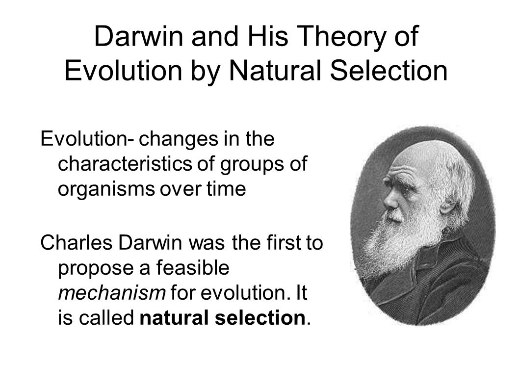 Conditions Of Evolution By Natural Selection