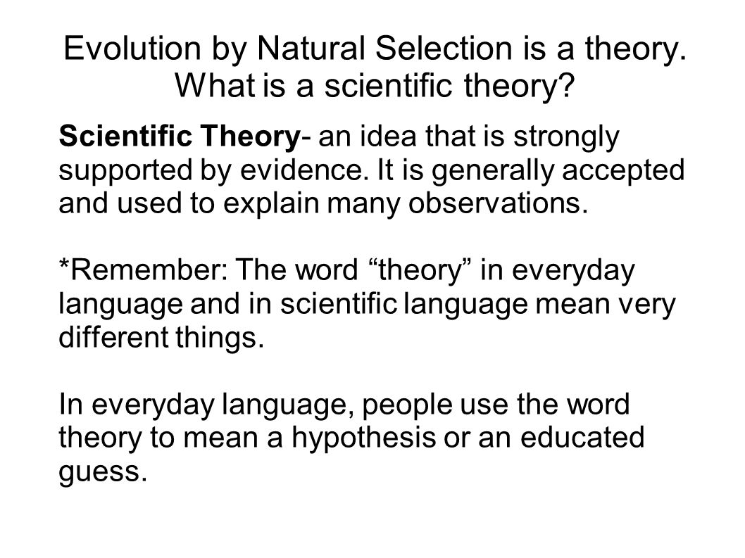 Evolution by Natural Selection is a theory. What is a scientific theory
