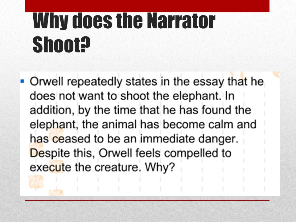 Why does the Narrator Shoot