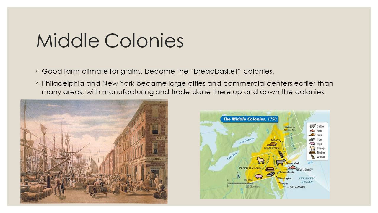 Middle Colonies Good farm climate for grains, became the breadbasket colonies.