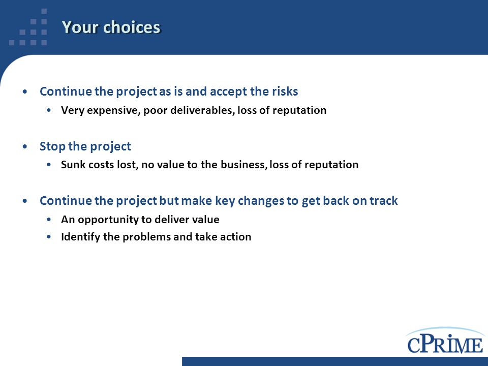 Your choices Continue the project as is and accept the risks