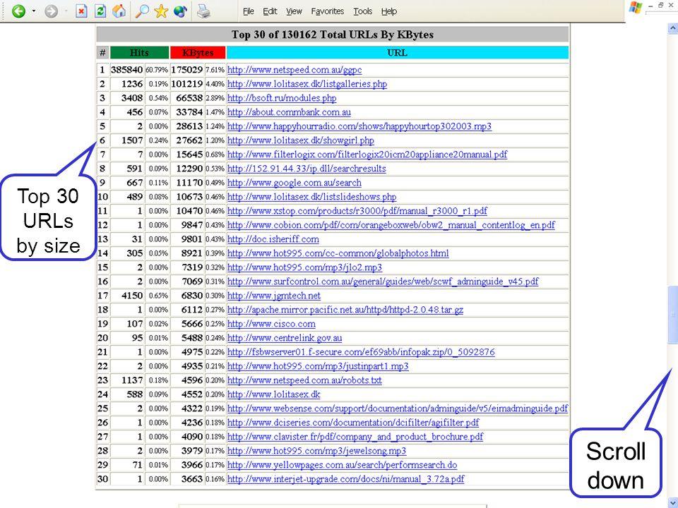 Top 30 URLs by size Scroll down