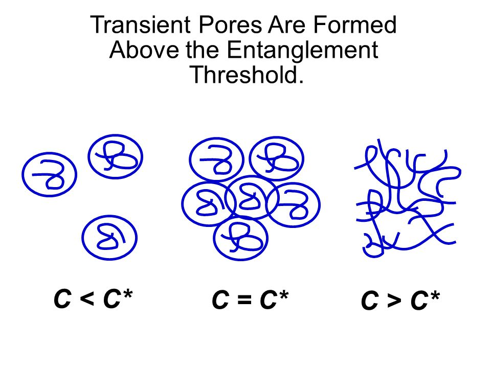 Transient Pores Are Formed Above the Entanglement Threshold.