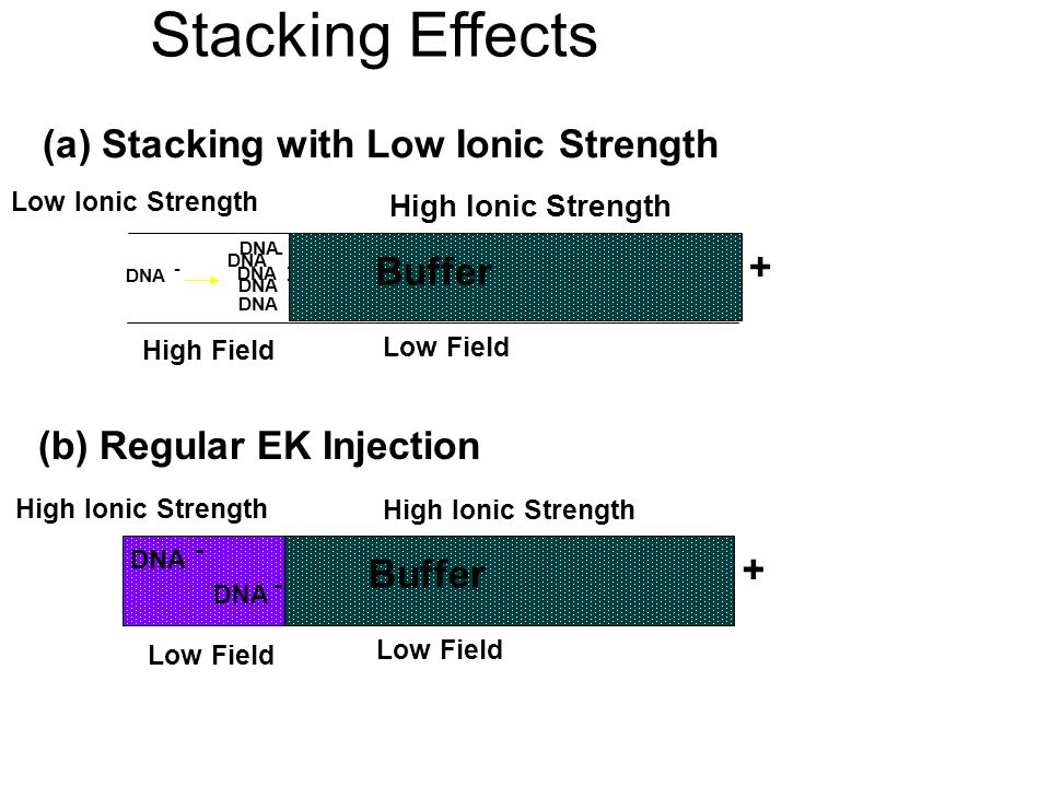 Stacking Effects (a) Stacking with Low Ionic Strength + Buffer