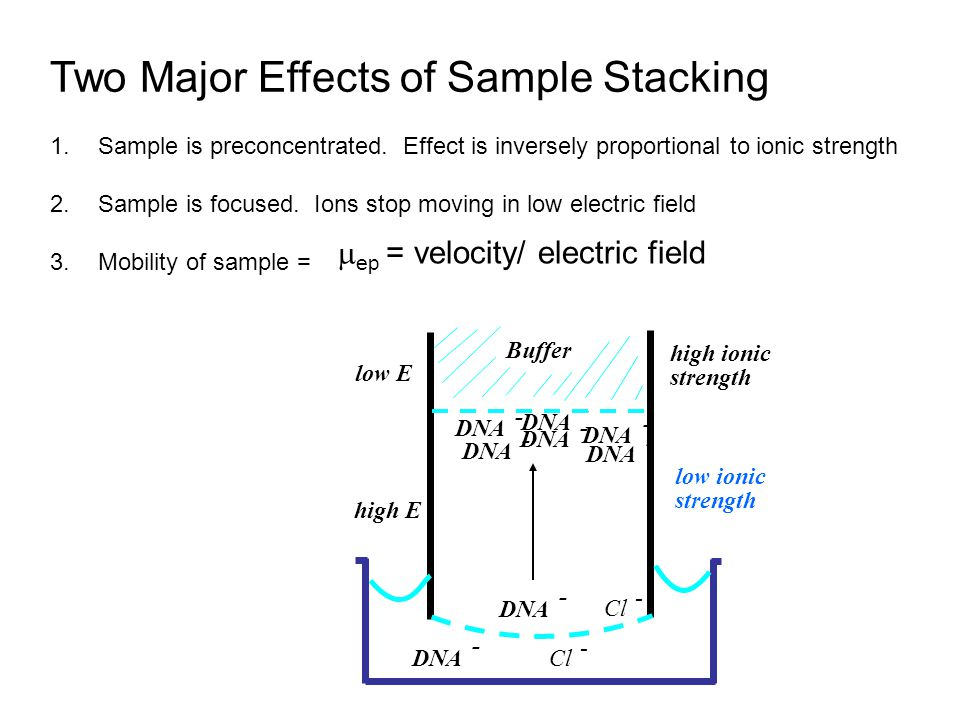 Two Major Effects of Sample Stacking
