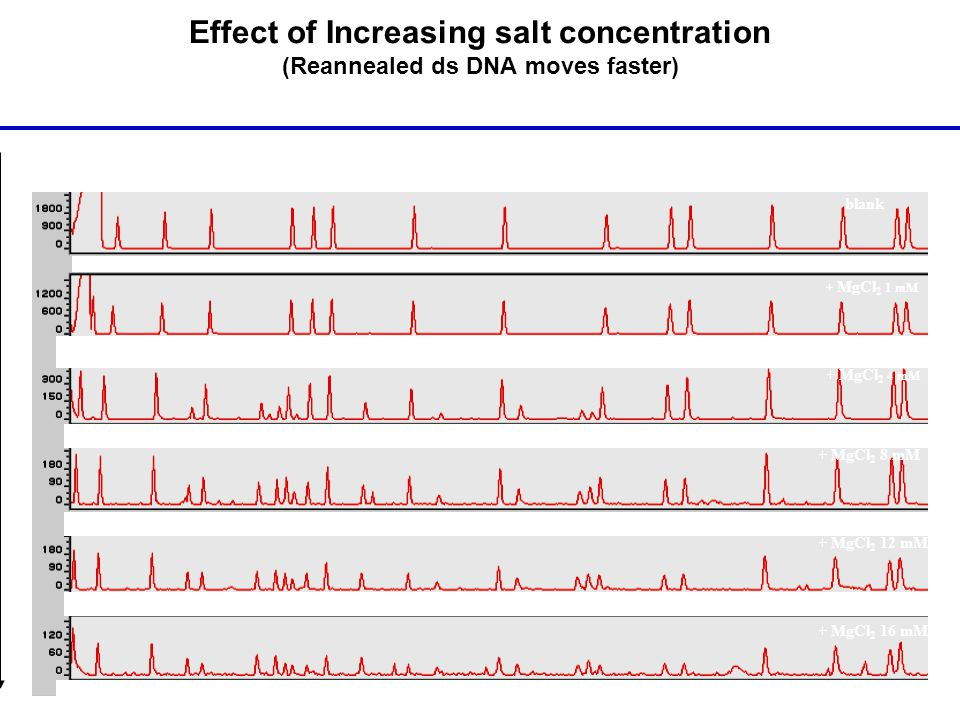 Effect of Increasing salt concentration (Reannealed ds DNA moves faster)