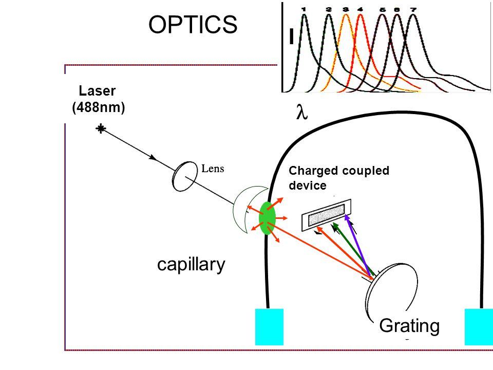 OPTICS I Laser (488nm)  Charged coupled device capillary Grating