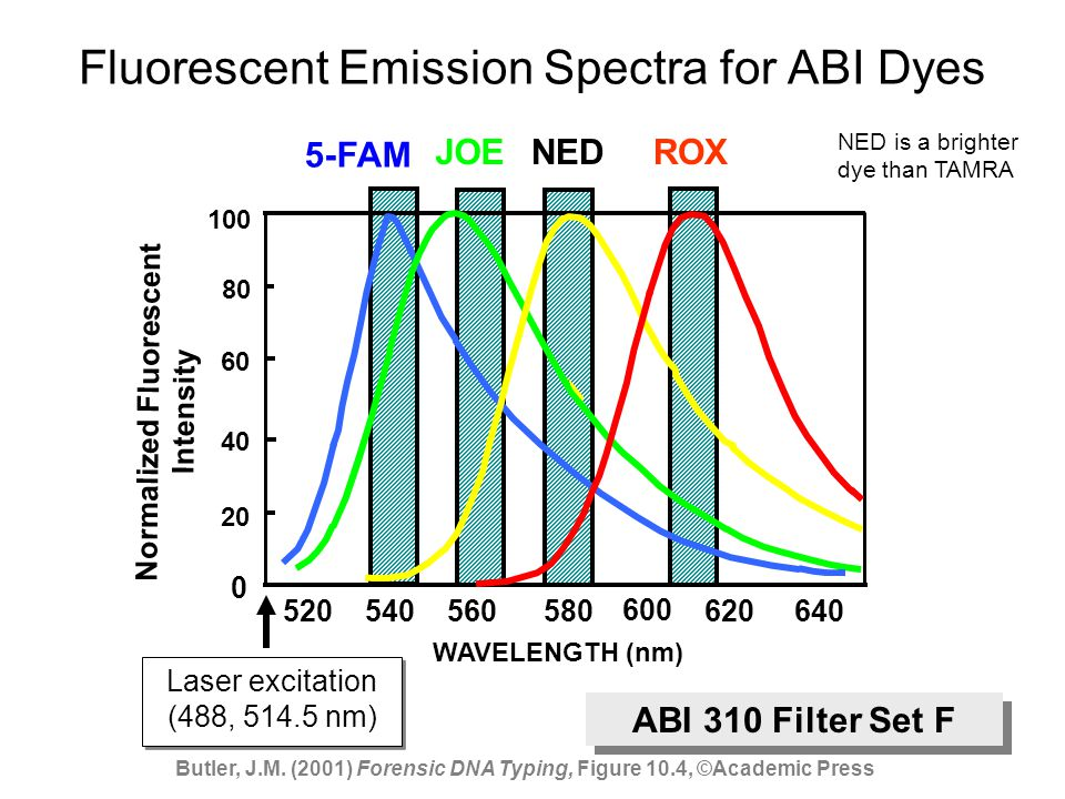Fluorescent Emission Spectra for ABI Dyes