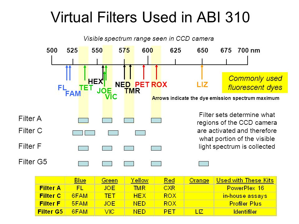 Virtual Filters Used in ABI 310