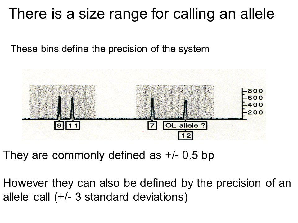 There is a size range for calling an allele