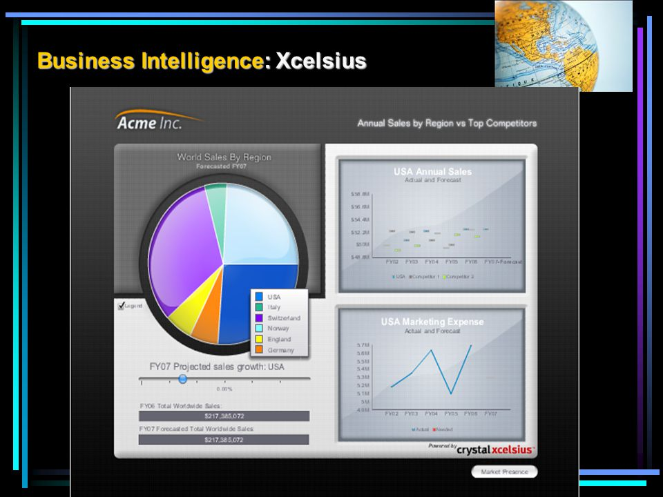 Business Intelligence: Xcelsius