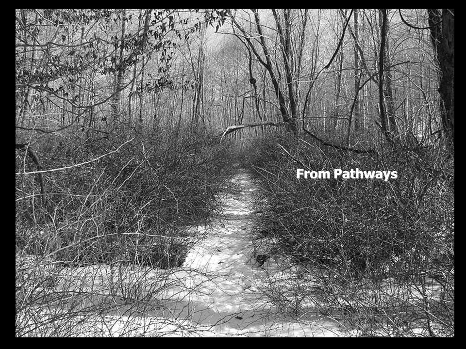 From Pathways