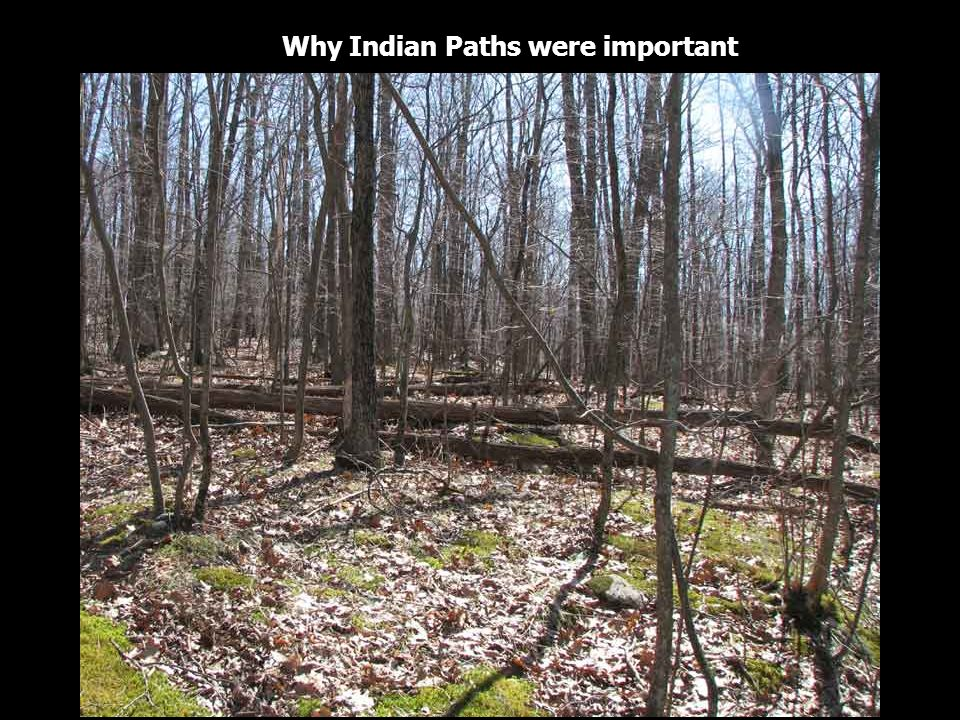 Why Indian Paths were important
