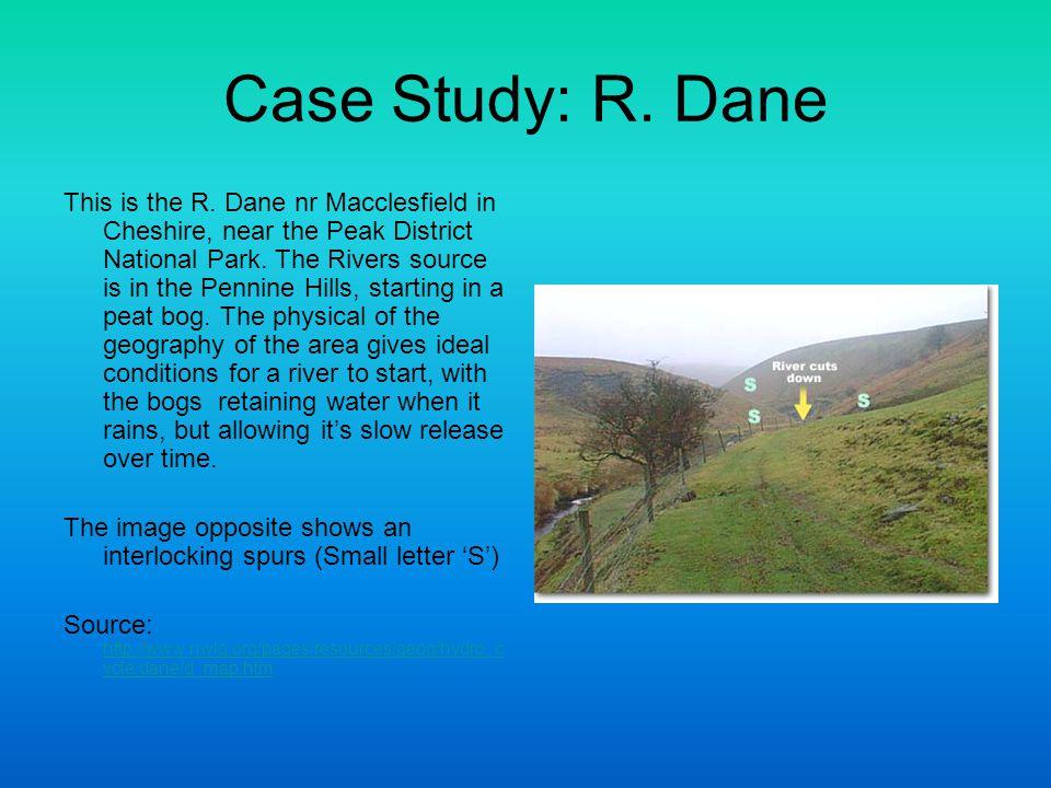 Case Study: R. Dane