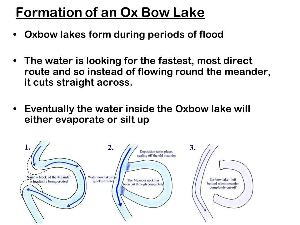 Formation of an Ox Bow Lake