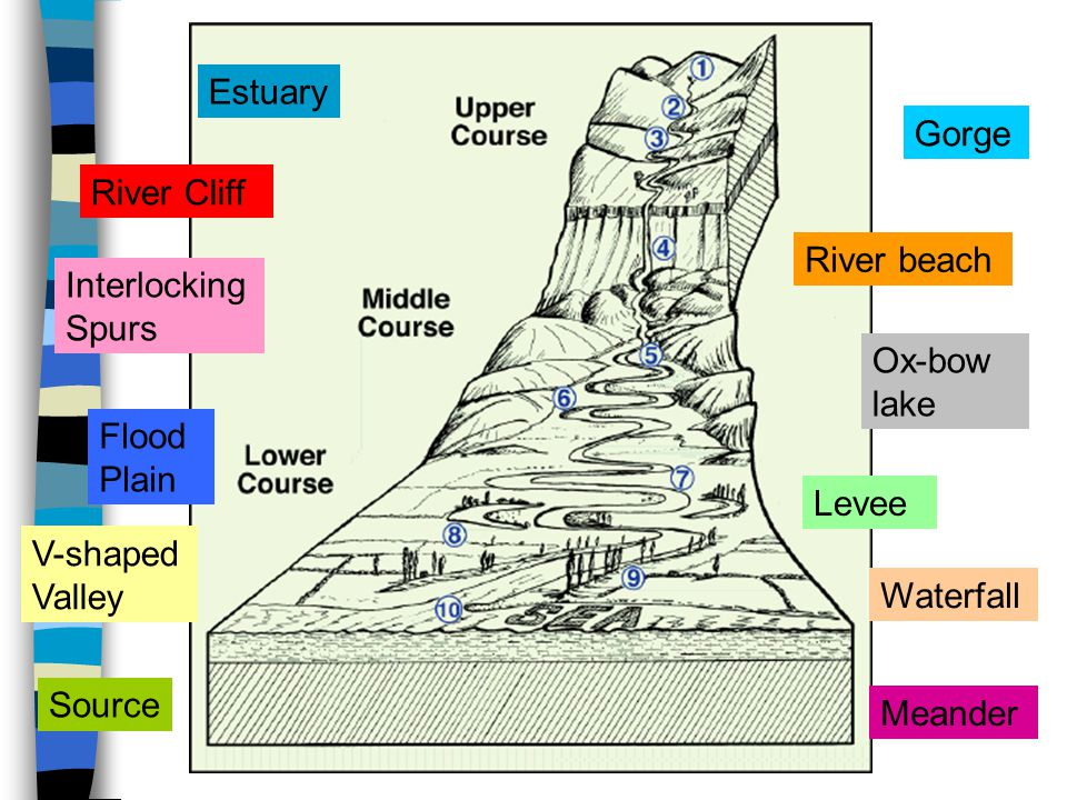 Estuary Gorge. River Cliff. River beach. Interlocking Spurs. Ox-bow lake. Flood Plain. Levee.