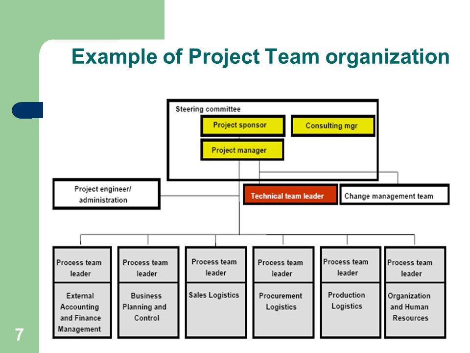 Example of Project Team organization