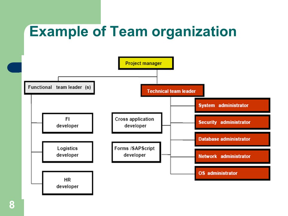 Example of Team organization
