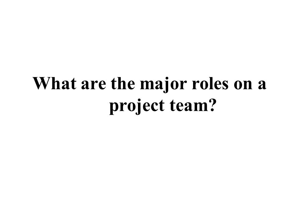 What are the major roles on a project team