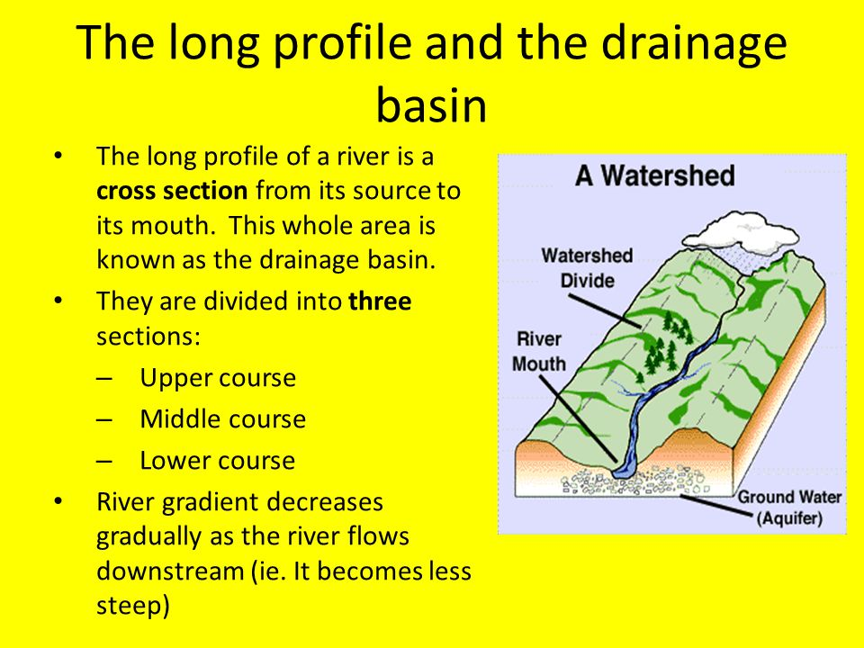 The long profile and the drainage basin