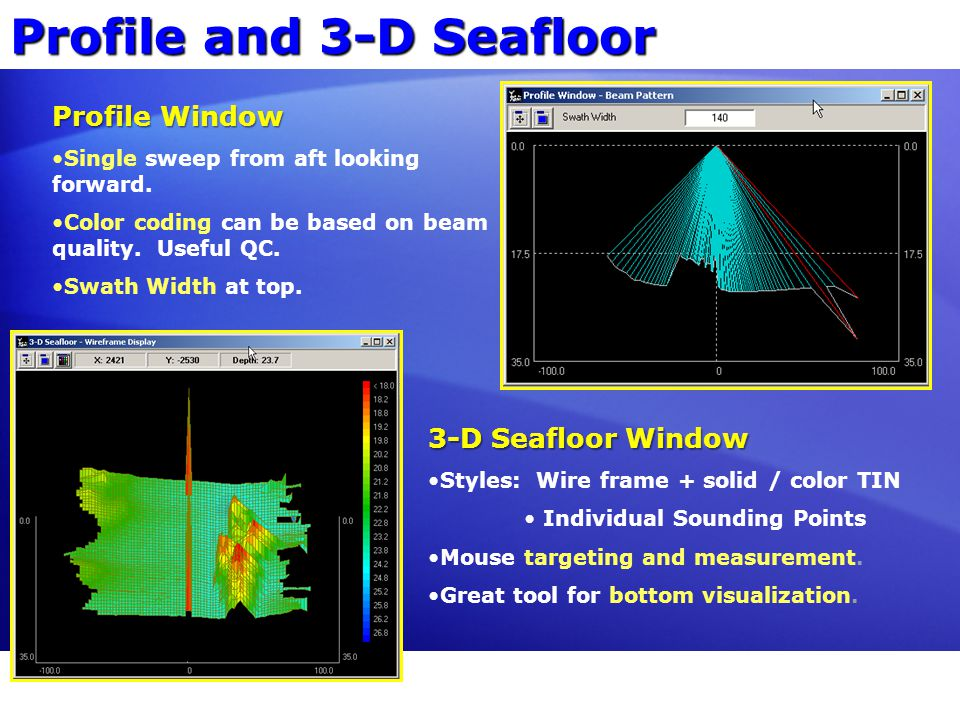 Profile and 3-D Seafloor