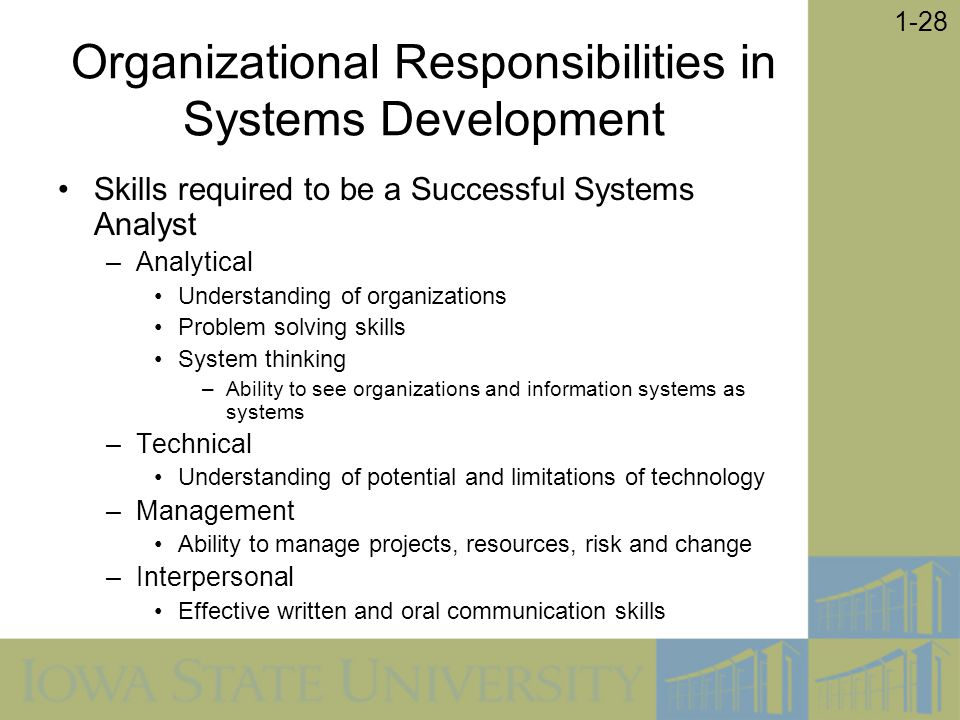 Organizational Responsibilities in Systems Development