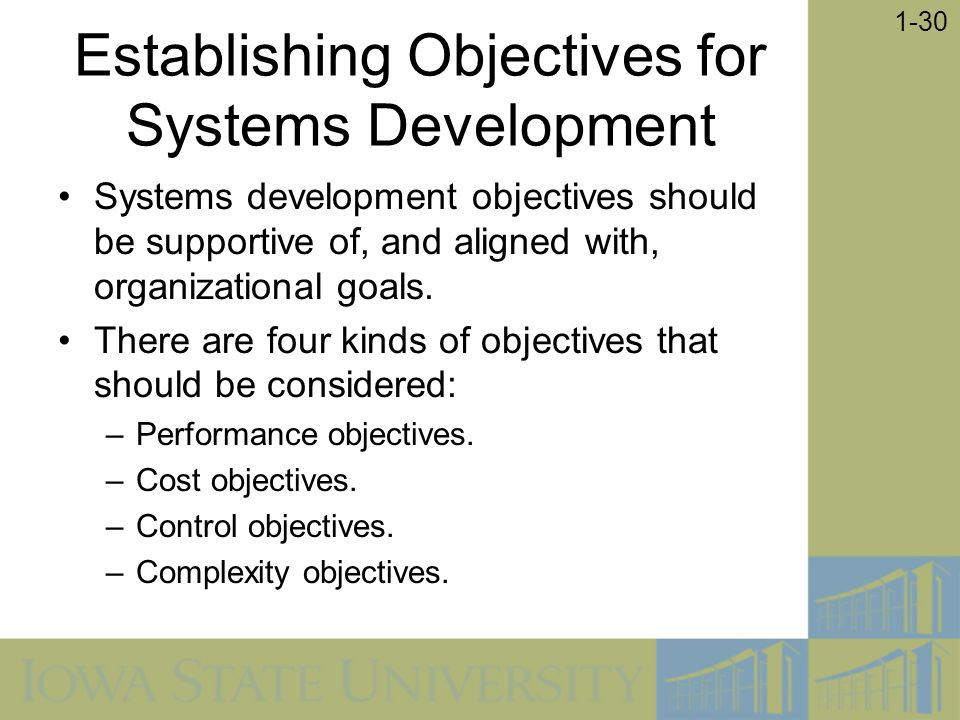 Establishing Objectives for Systems Development
