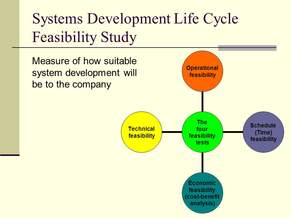 Systems Development Life Cycle Feasibility Study
