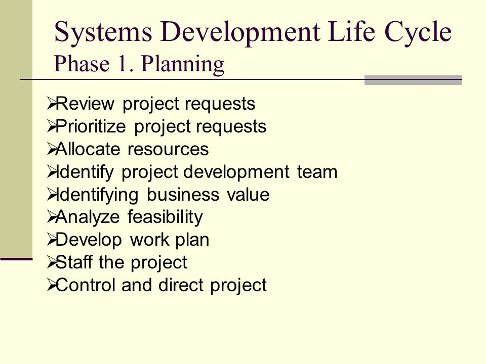 Systems Development Life Cycle Phase 1. Planning