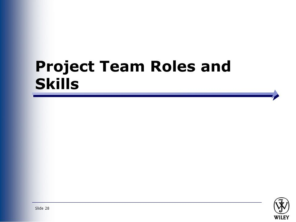 Project Team Roles and Skills
