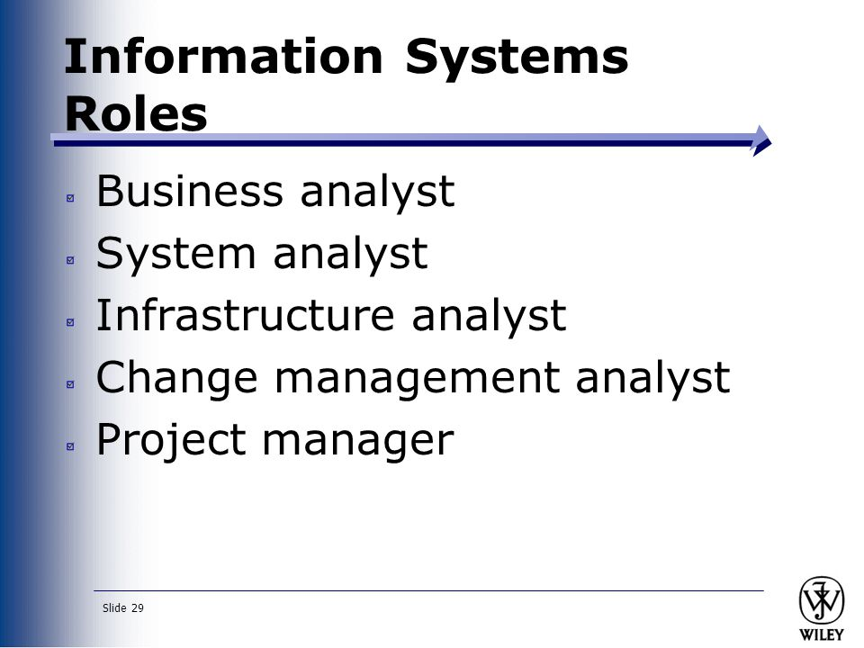 Information Systems Roles