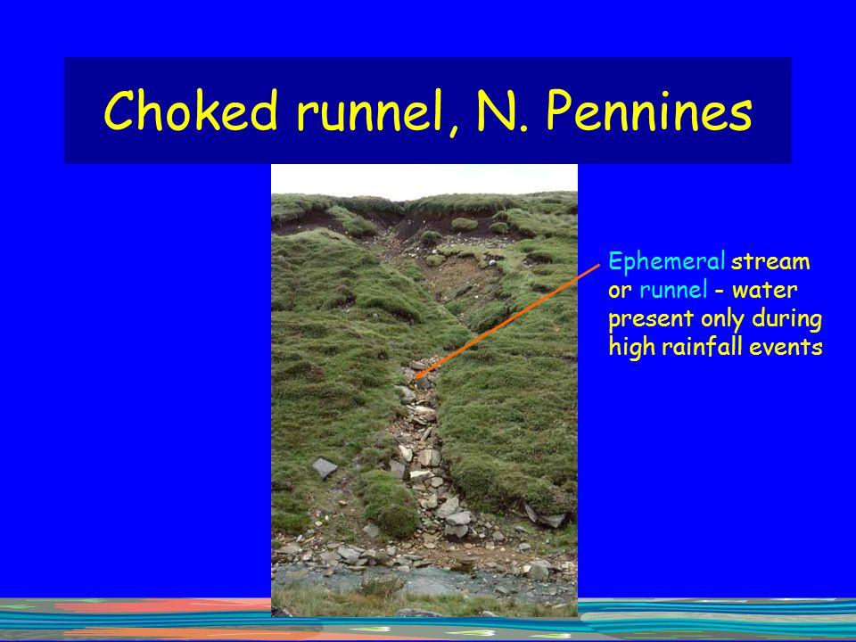 Choked runnel, N. Pennines