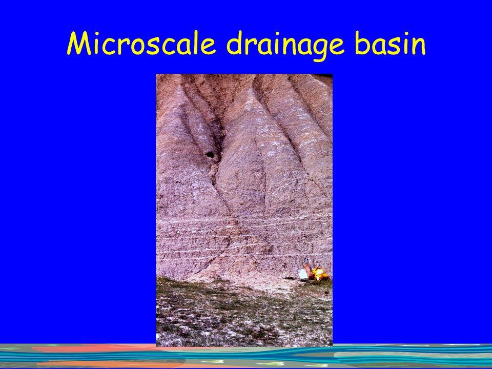 Microscale drainage basin