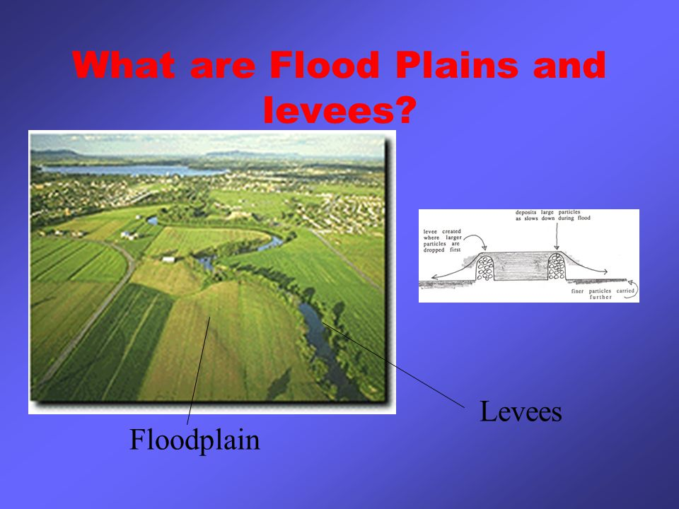 What are Flood Plains and levees