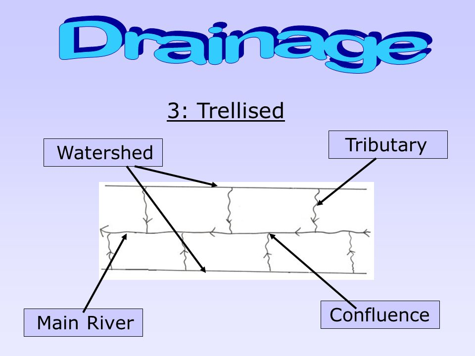 Drainage 3: Trellised Tributary Watershed Confluence Main River