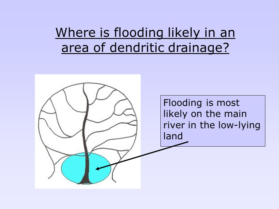 Where is flooding likely in an area of dendritic drainage