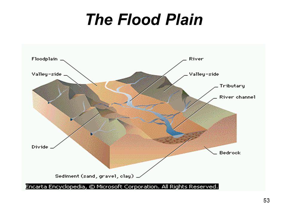 The Flood Plain