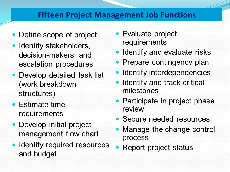 Fifteen Project Management Job Functions