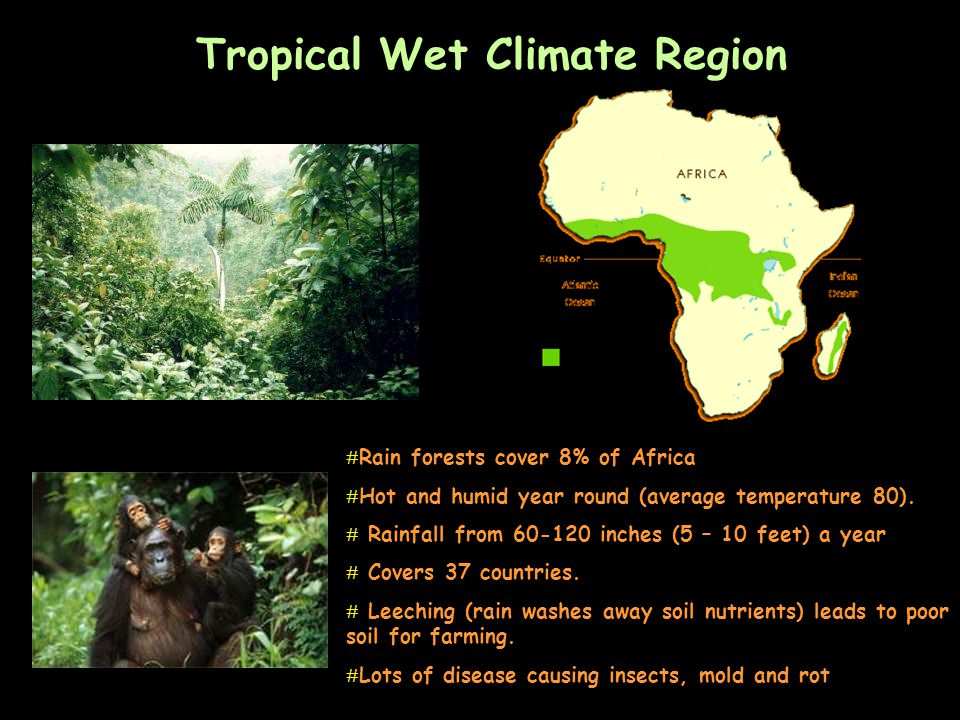 Tropical Wet Climate Region