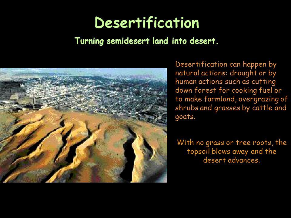 Turning semidesert land into desert.