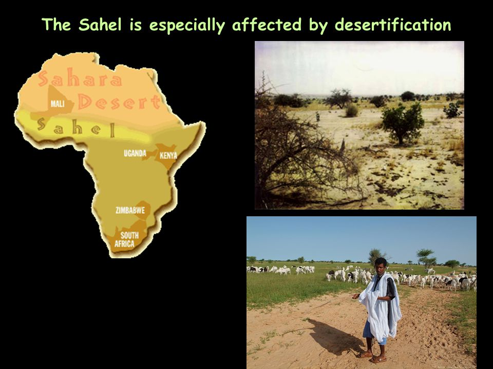 The Sahel is especially affected by desertification